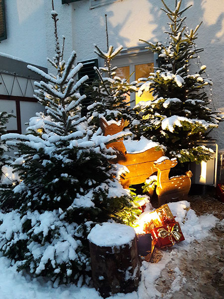 Weihnachtsmarkt_2017_35